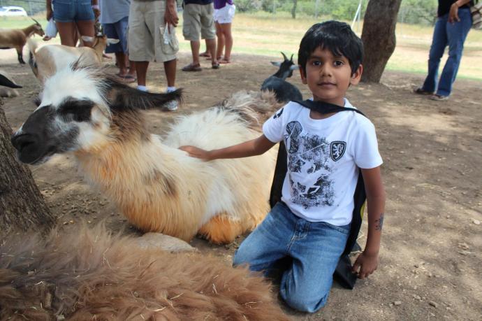 Rishab petting Lama at the safari